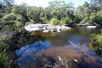 Circular Pool, Walpole-Nornalup National Park