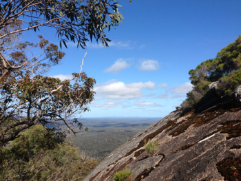 Half Way Up Mount Frankland