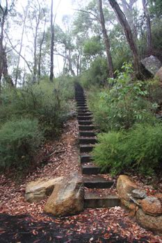 Stairs to Mount Frankland, Walpole