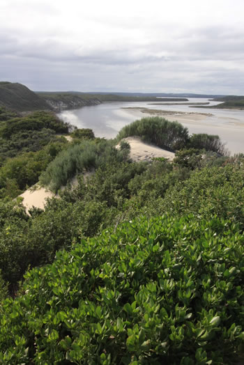 Top of the Peaceful Bay Sand Dunes overlooking Irwin Inlet