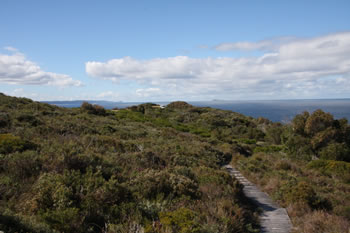 Bibbulmun Track through West Cape Howe