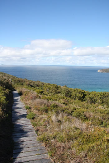 Bibbulmun Track through West Cape Howe National Park