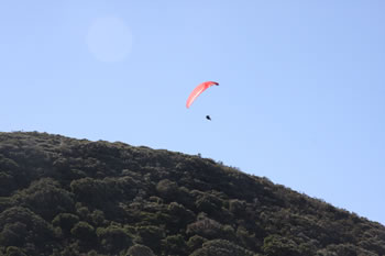 Hang Glider off Shelley Beach, West Cape Howe