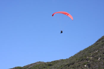Paragliding from Shelley Beach Lookout facing Albany Windfarm, West Cape Howe