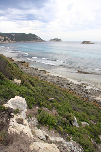 Sinker Reef, Two Peoples Bay