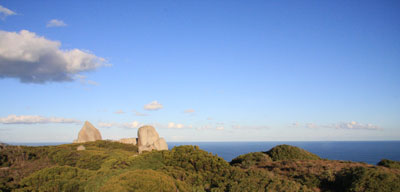 Tower Hill Panorama, William Bay NP