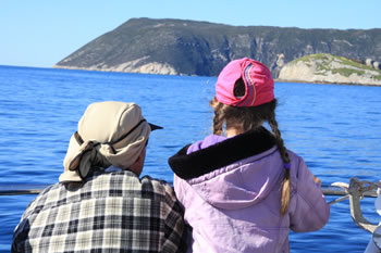 Whale Watching Tours are Great!