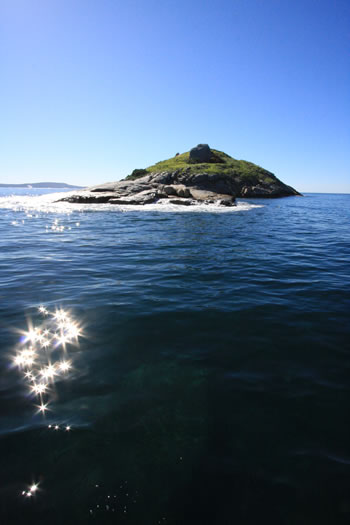 Seal Island, King George Sound