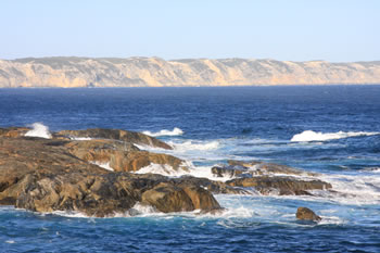 Wilson Head and the Great Southern Ocean